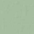 Pastel Green RAL6019